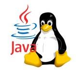 java linux ubuntu suse fedora